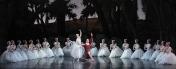 балет Сильфида